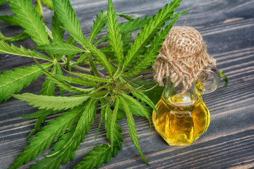 What do you find out about balance cbd oil?